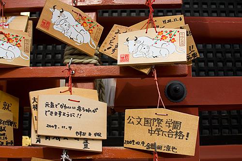 Ema, Tsurugaoka Hachimangu Tapınağı, Kamakura