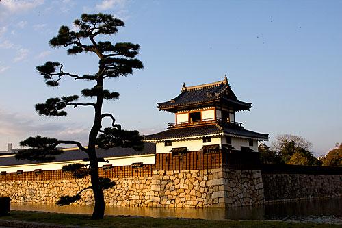 Hiroshima Kalesi'nden bir görünüm.