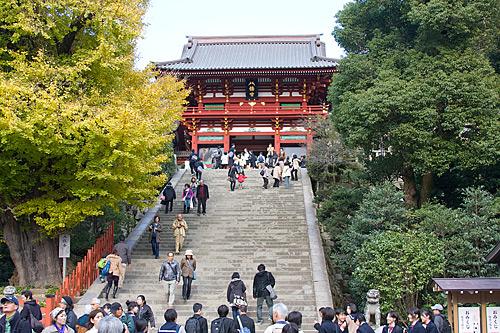 Hongu Tapınağına çıkan merdivenler. Soldaki sarımsı renkli ağaç 1000 yaşında bir ginko ağacı. Arkasına saklanan birinin zamanın Shogun'una suikast yapması ile ünlü. Bu heybetli ağaç, maalesef bu fotoğraf çekildikten iki ay sonra bir fırtınada devrildi.
