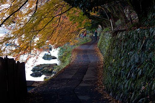 Iwatayama Maymun Parkı'ndaki yürüyüş yolu