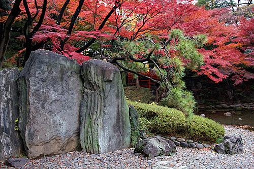 koishikawa-korakuen-bahcesi