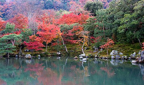 Tenryu-ji Tapınağı'nın bahçesi.