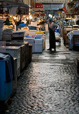 Tsukiji Balık Pazarı'ndan görünümler.