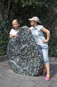 Luoyang'ın simgesi şakayık. Üzerinde şakayık çiçeğine benzeyen desenler olan bu doğal taş, ziyaretçilerin ilgi odağı.