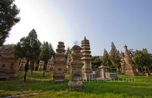 Pagoda Ormanı